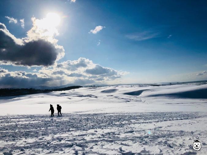 tottori-sand-dune-snow01