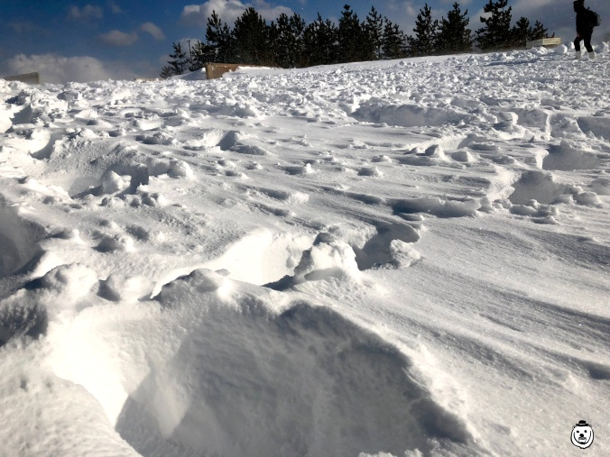 tottori-sand-dunes-snow002